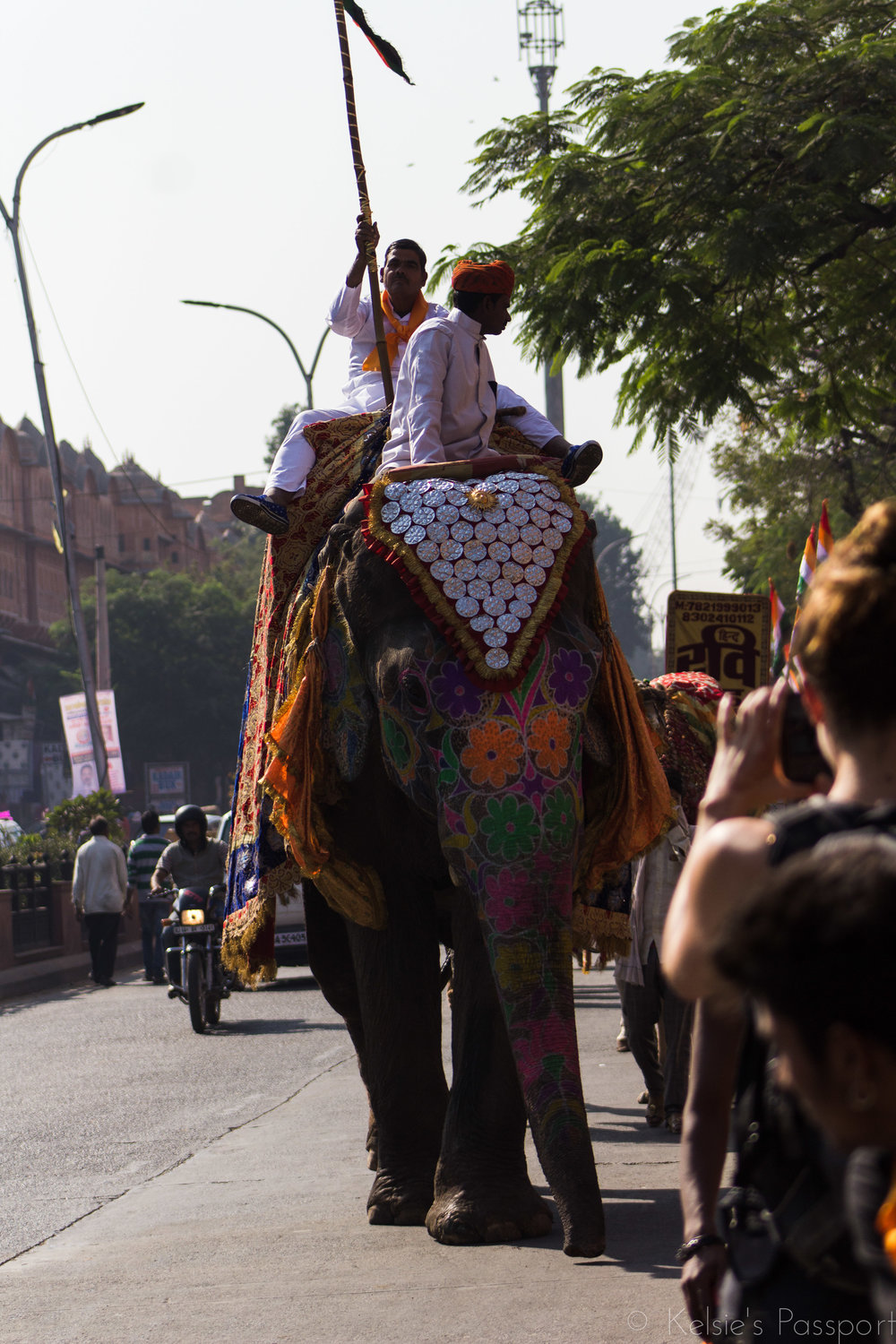 They ride the elephants, they paint the elephants, they whip the elephants. If this bothers you, Jaipur may not be a city you want to visit.