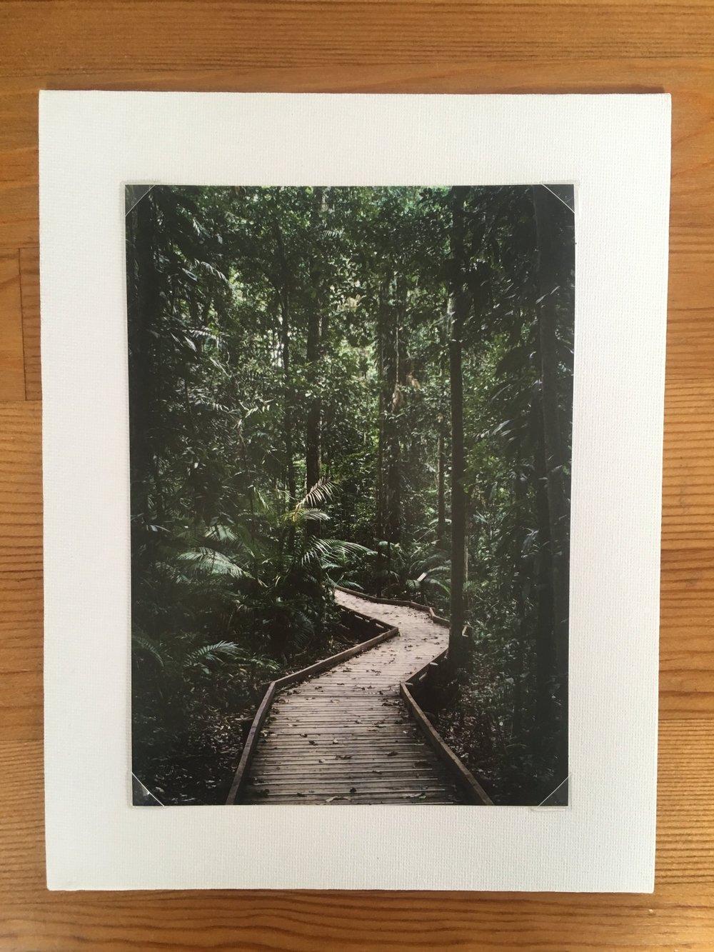 Into the Jungle Framed.jpg