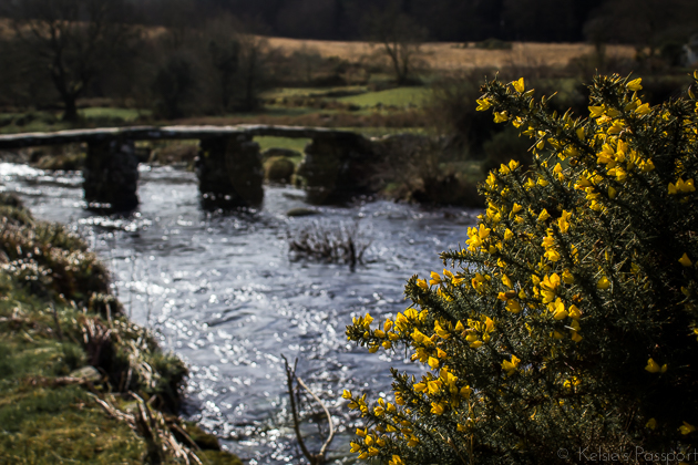Dartmoor_England-21.jpg