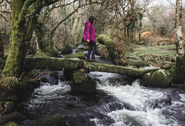 Dartmoor_England-31.jpg