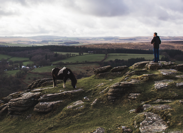 Dartmoor_England-44.jpg