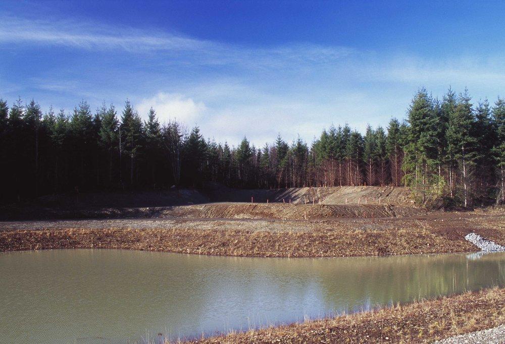 Retention Pond Survey Staking
