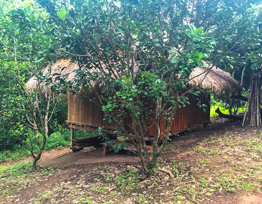 Our bungalow in the jungle.