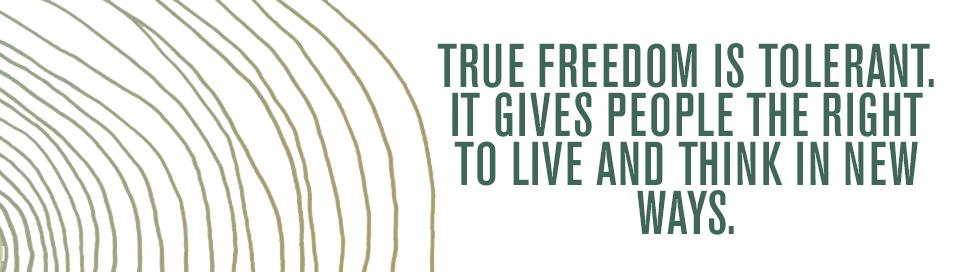 twelvehawks_freedom.jpg