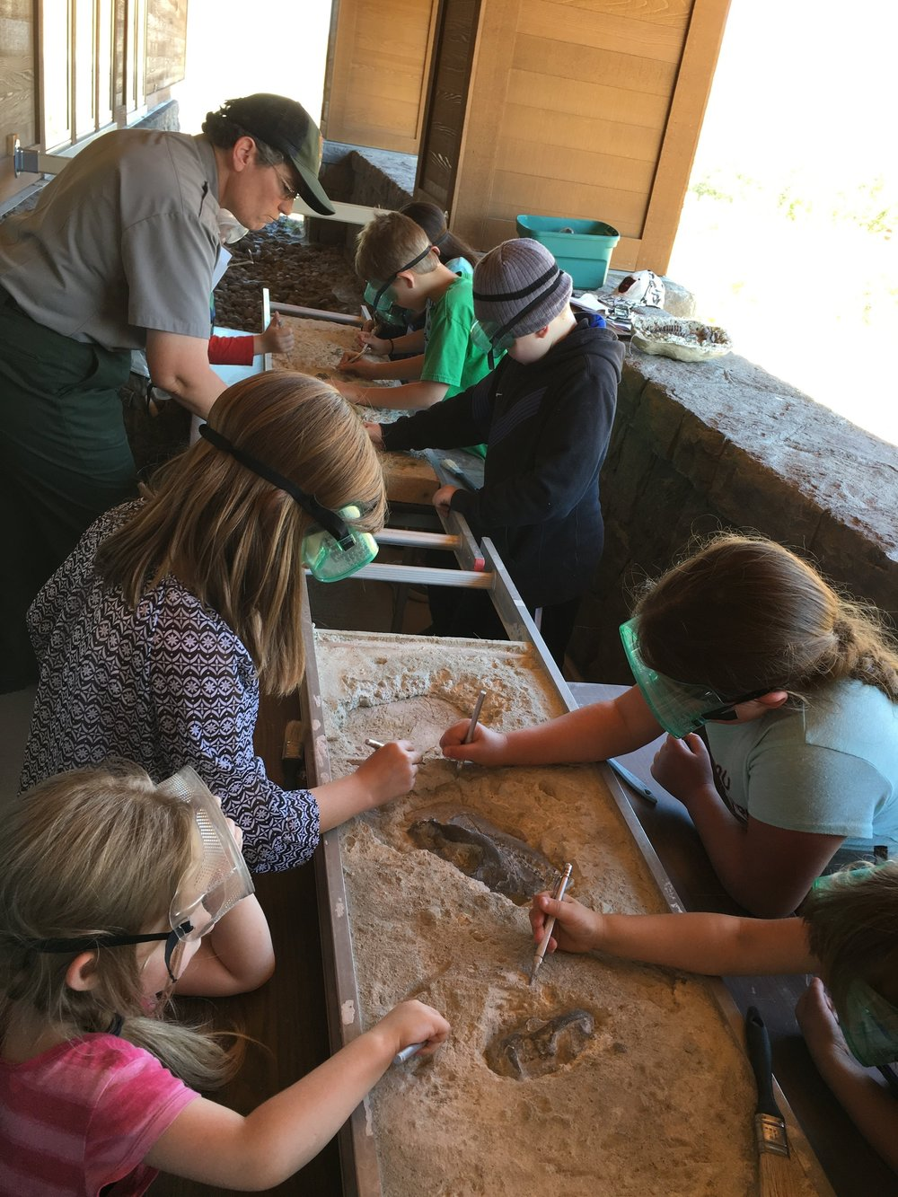Students Practice Carefully Unearthing Fossils
