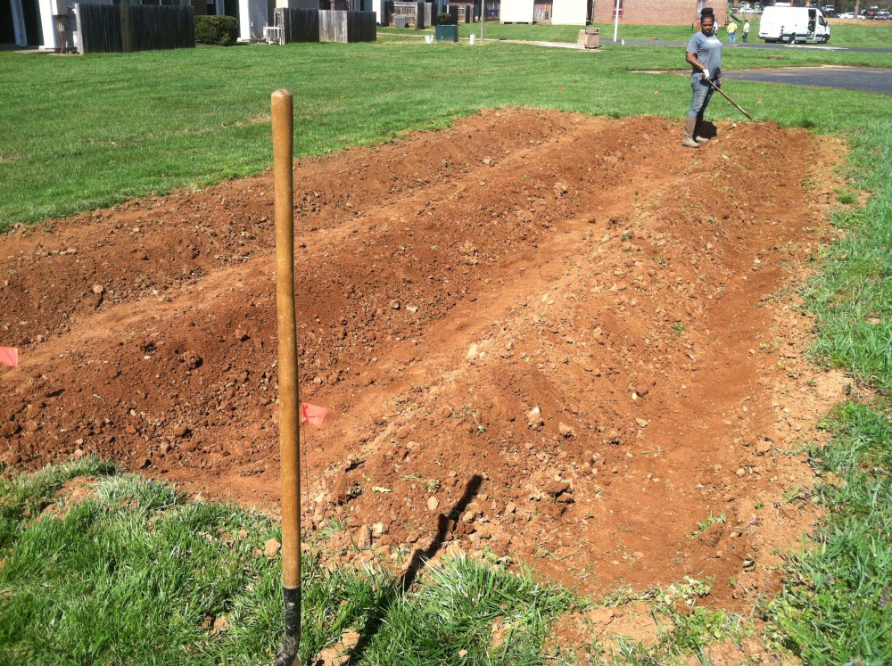 In March, we prepared a new space for the strawberries by building raised beds.