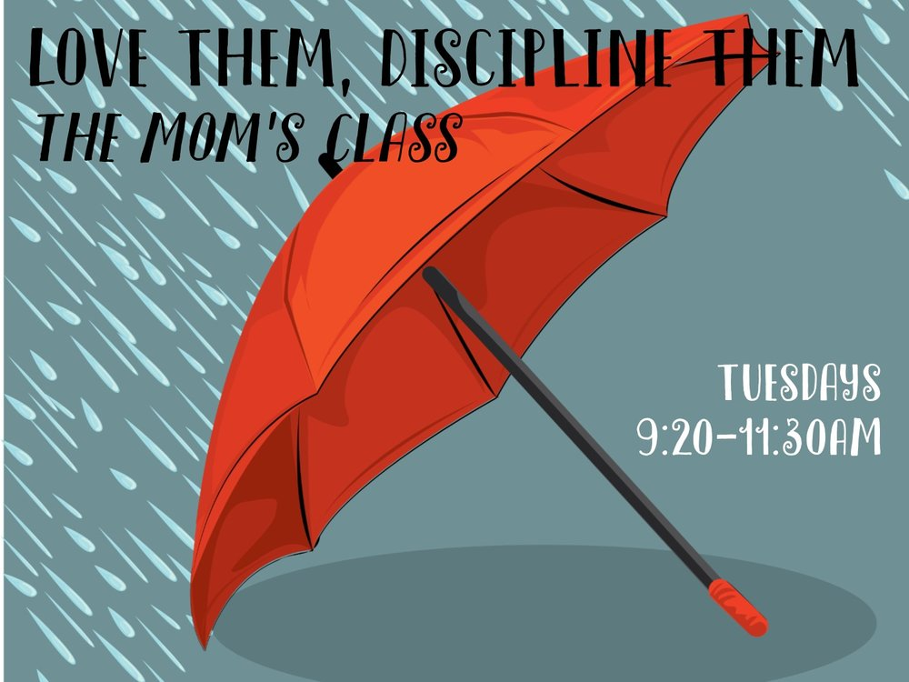 - The Mom's ClassLove Them, Discipline Them- a small group parenting class.