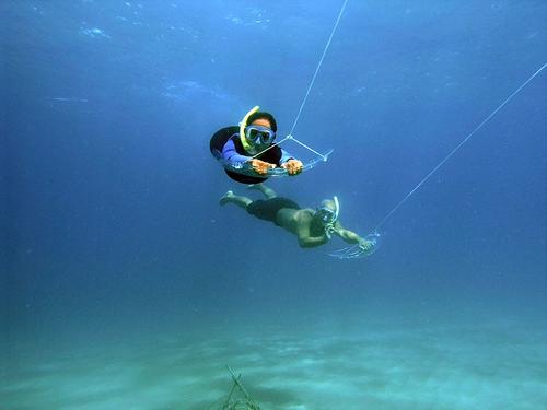 TOUR   Isla Solarte Deep Boarding under the sea Price: $39.00