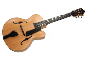 7string_archtop copy.png