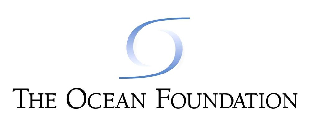 the-ocean-foundation.jpg