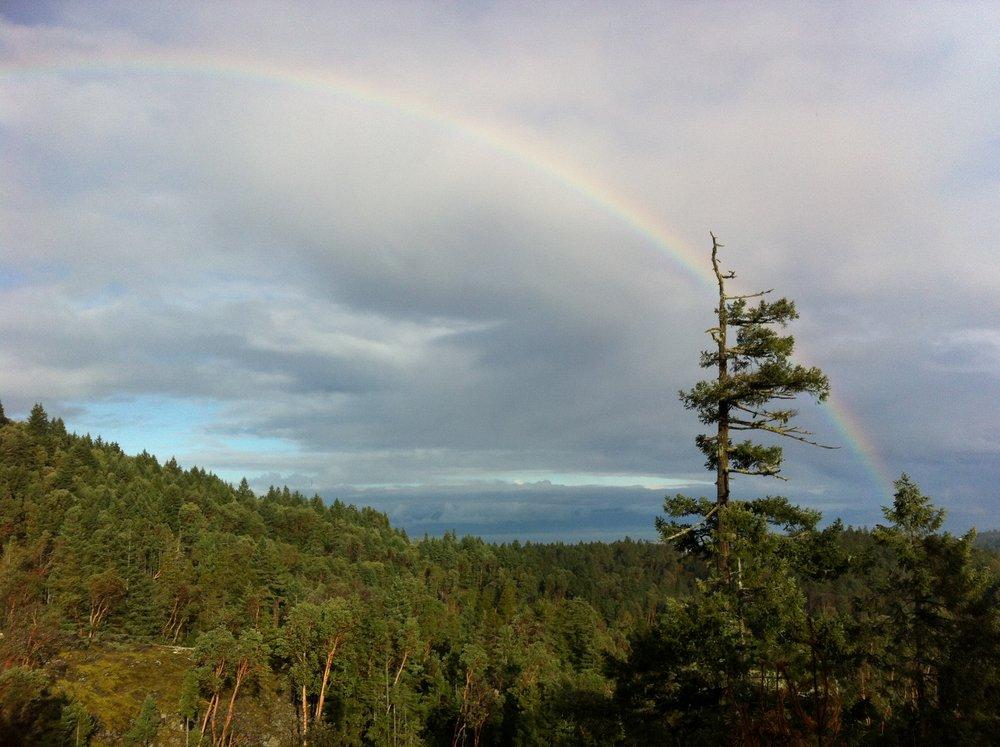 Rainbow_1793.JPG