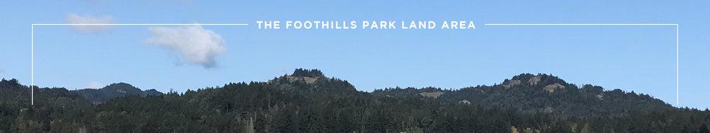 Park-Land.jpg