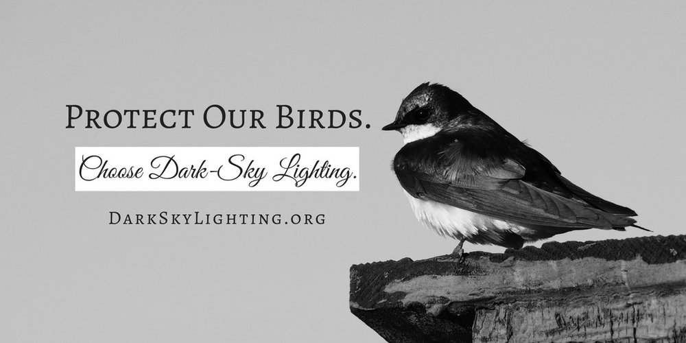 Protect Our Birds.