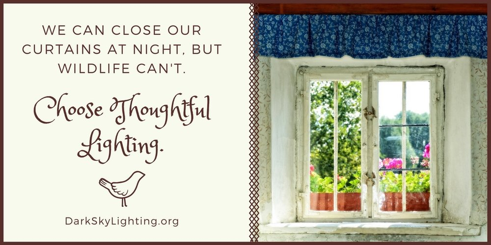 Choose Thoughtful Lighting