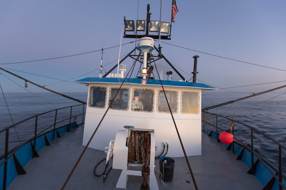 1709-Ocean Beaut-285.jpg