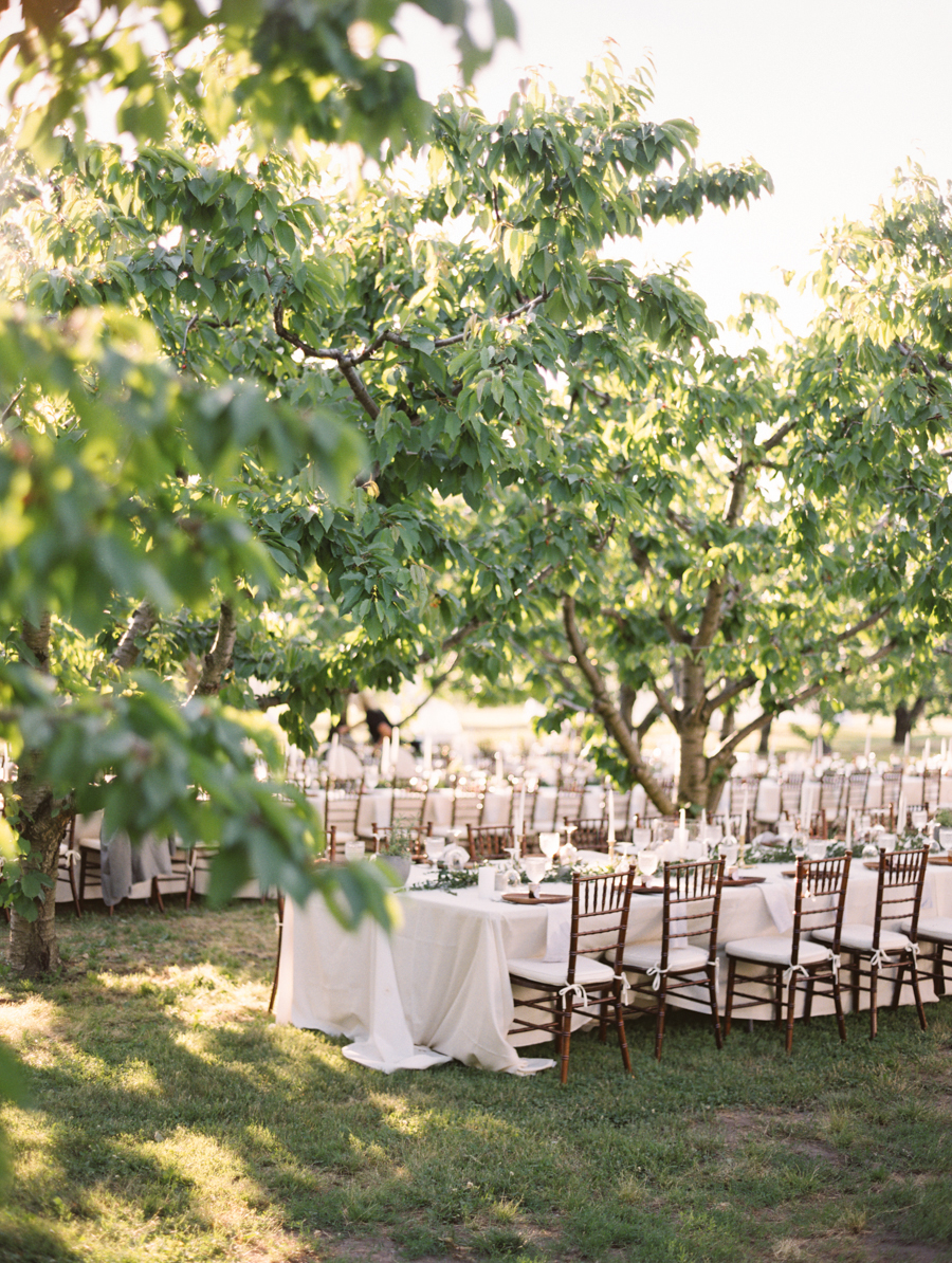 512-fine-art-film-photographer-niagara-on-the-lake-toronto-destination-wedding-brumley-wells-nick-nat.jpg