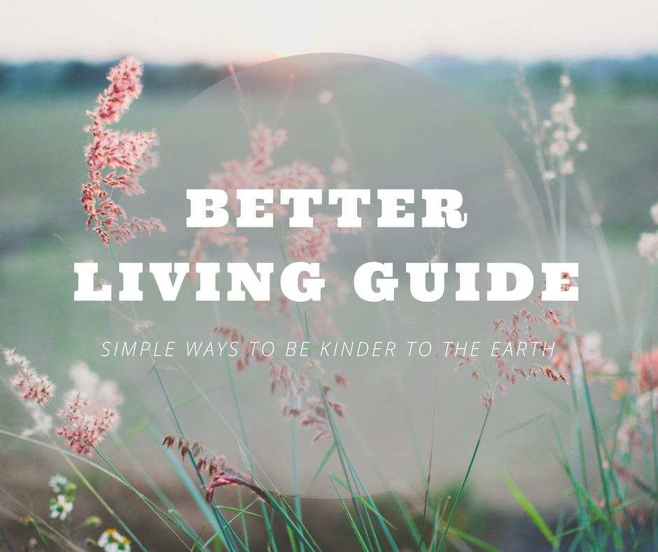 Better living guide.jpg