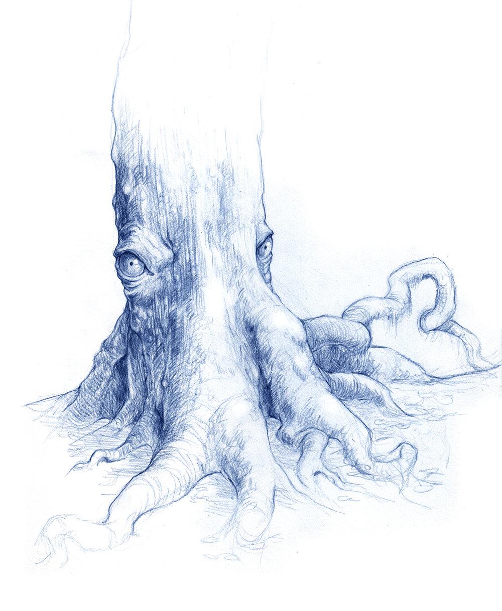 Davy Jones tree
