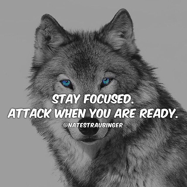There's nothing worse than being unprepared. Make sure you do your research before attacking your goals.