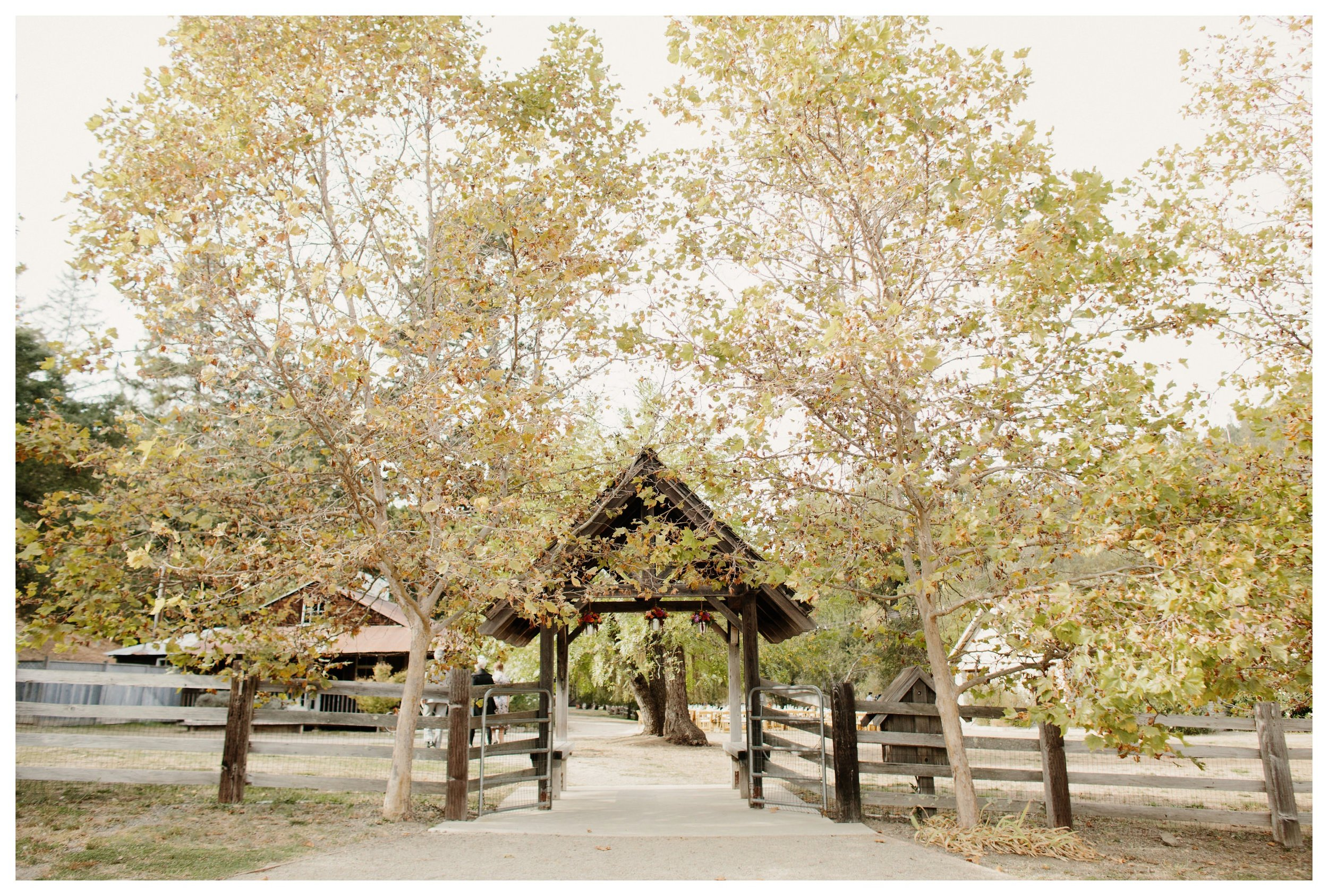 radonich ranch wedding_0274