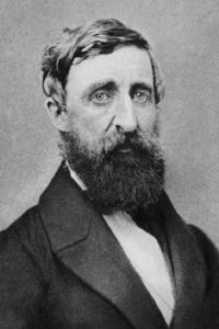 henry-david-thoreau-portrait-1861 crop.jpg