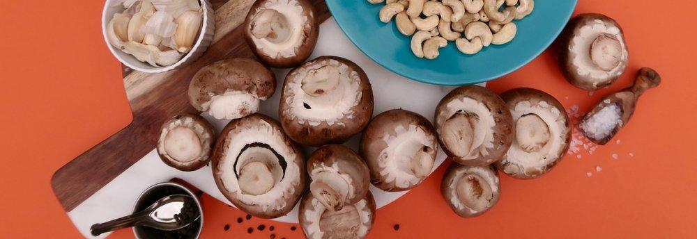 Mushroom report_IMG_1480_1024.jpg