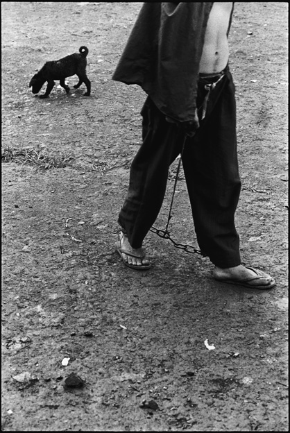 A Prisoner Walking His Dog