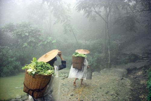 A Hani village, Yunnan Province