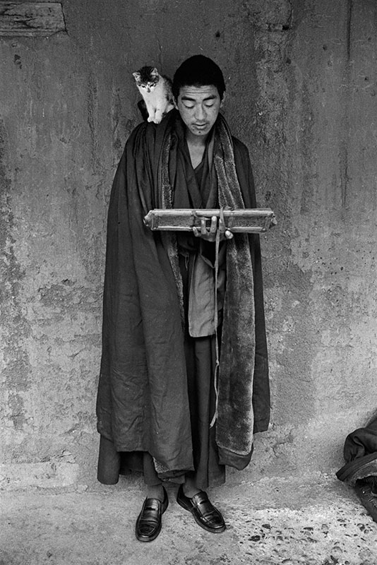 A monk reading the sutras with a cat, Tibet