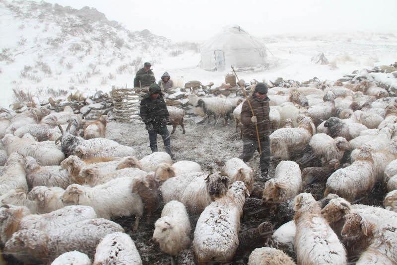 Erjan Muhamet (Kazak) - The Road of Migration