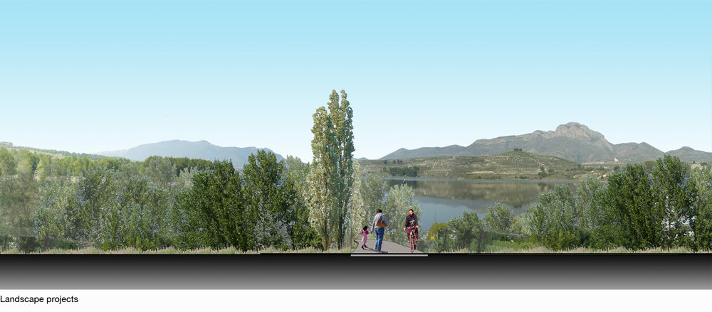 Fig5_Landscape Projects2.jpg