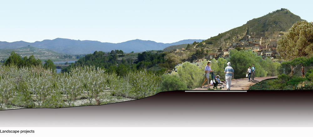 Fig5_Landscape Projects1.jpg