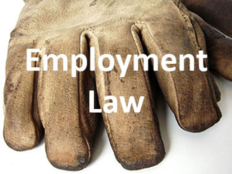 Employment-Law-Advice.jpg