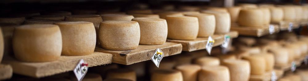 artisan-cheese-on-shelves