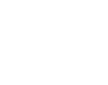 the-summit-festival-logo-wo.png