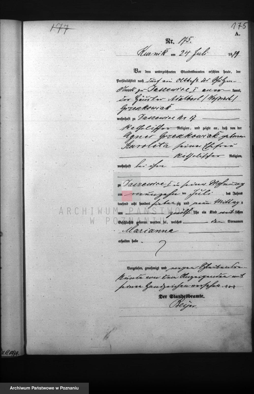 Birth Certificate of Marianna Grzeskowiak (1879-1941)