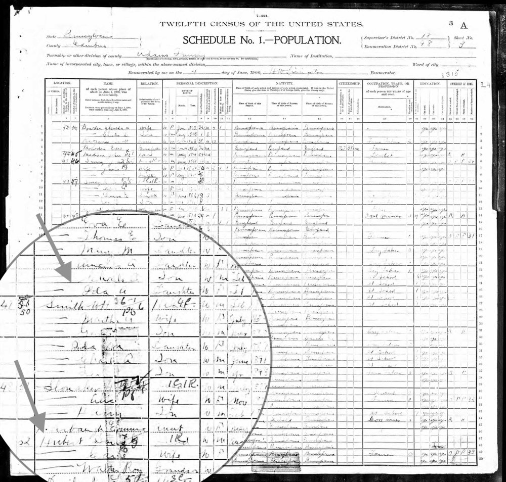 1900 Census Ida next to the Huberts.jpg