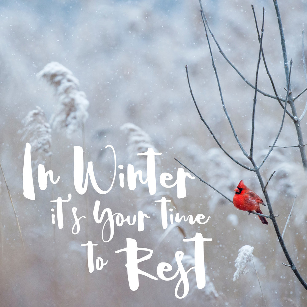 In winter it's your time to rest...