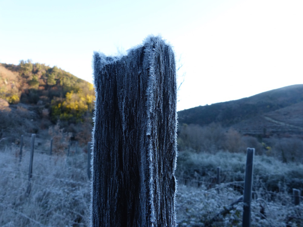 Frozen Post