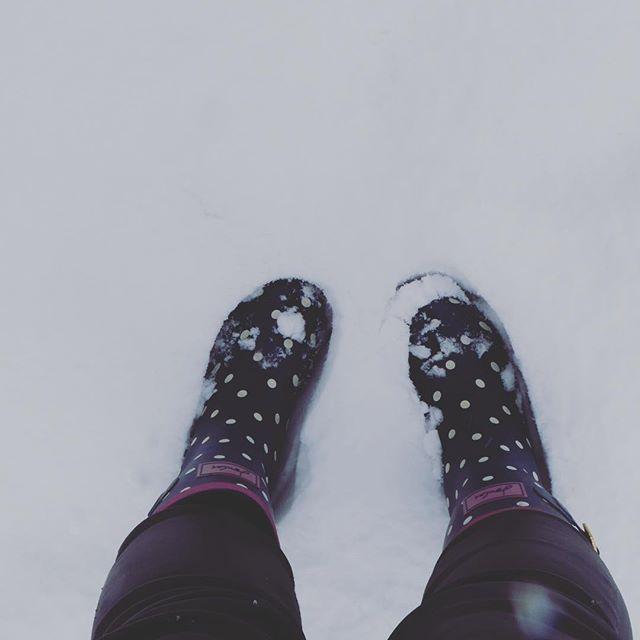 Snow Excited!! #notmuchsnowdownsouth #surprisesnow #catchingsnow #catchingwinter #wanderingfeet #wellies #catchinglife