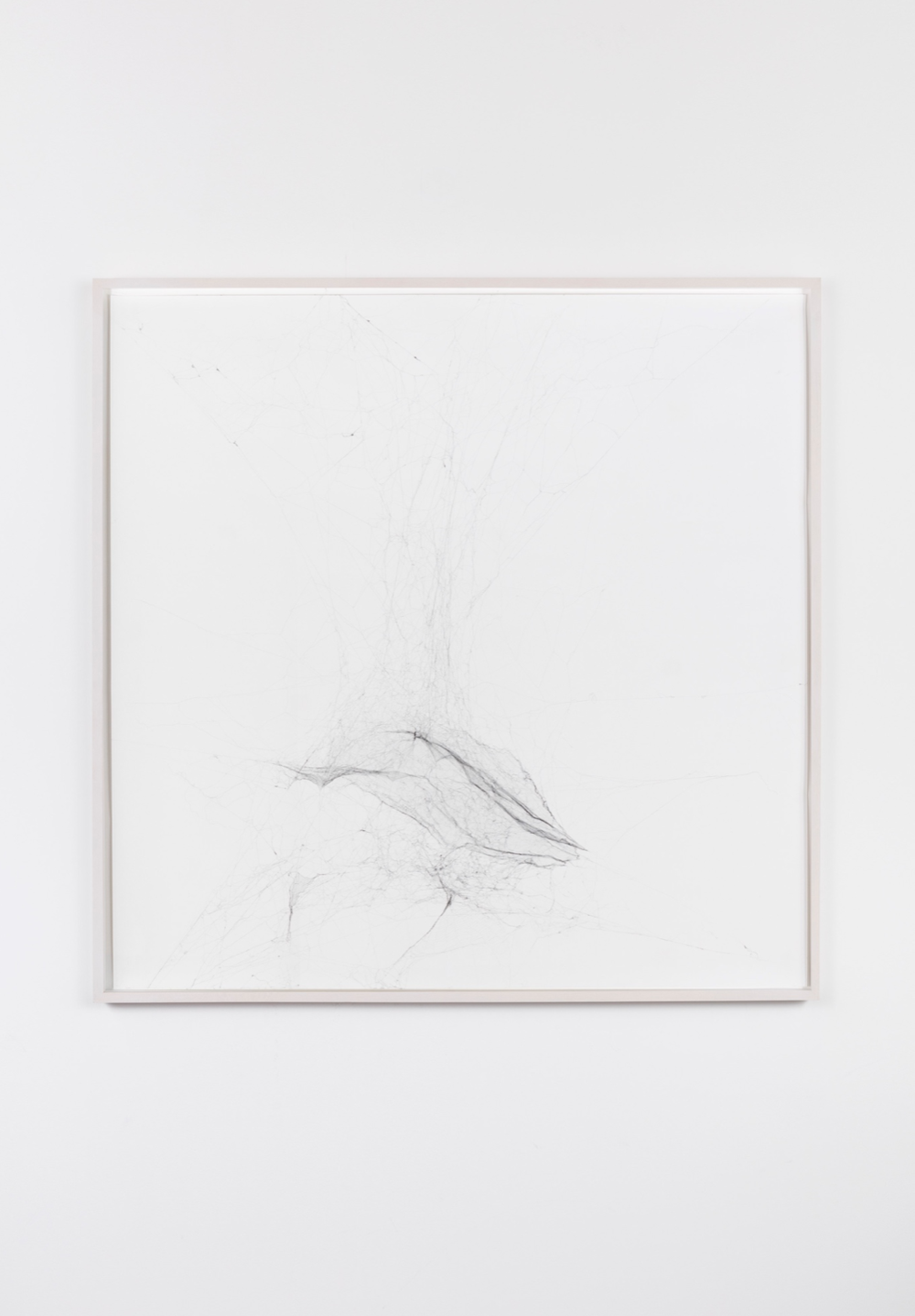 Tomás Saraceno Solitary Semi-Social Mapping Of SDSS J1030+0524 By A Solo Nephila Senegalensis - One WeekAnd A Solo Cyrtophora Citricola - Three Weeks, 2015 Spidersilk, paper, ink glue, gloss 92,5 x 92,5 x 5 cm (framed)