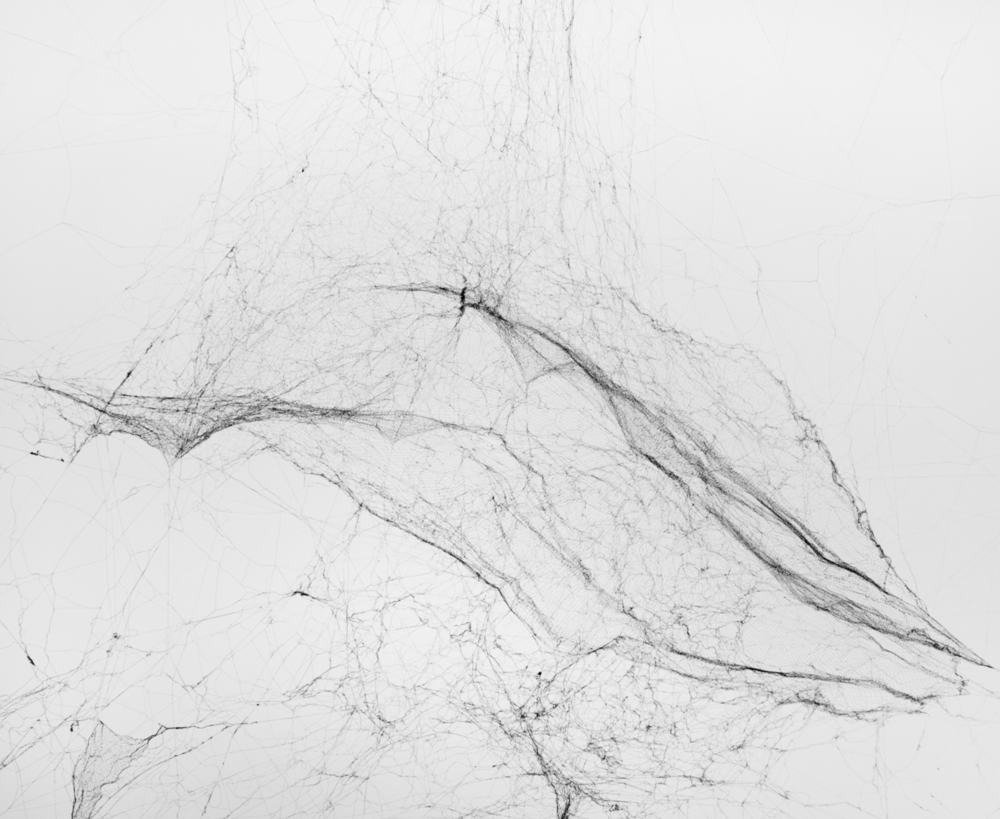 Tomás Saraceno - detail from the above work