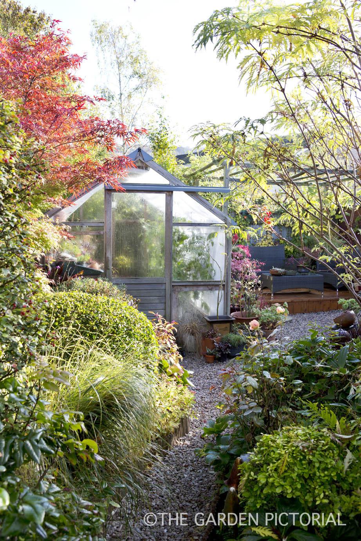 Overall garden c22 .jpg