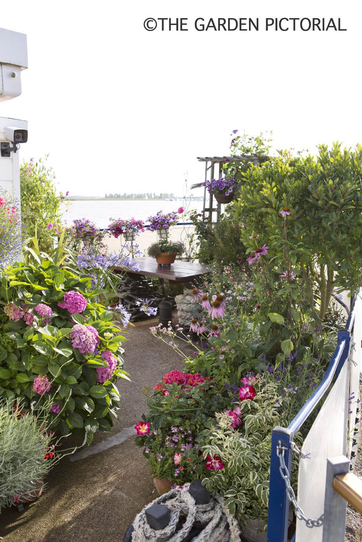 Overall garden a7  copy.jpg