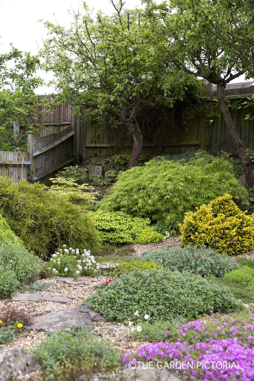 Back garden overall a1  copy.jpg