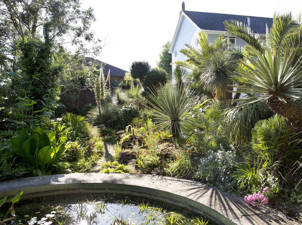 An Oasis Garden, Essex