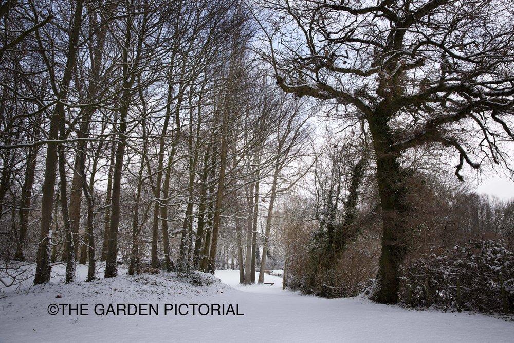 Gibberd_Garden_a9.jpg