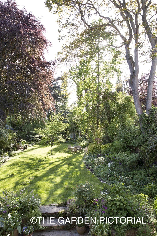 A Springtime Wildlife Garden