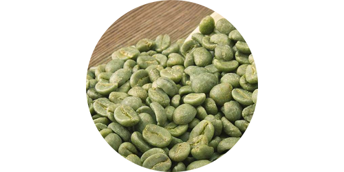 drop-down_green-coffee-bean.png