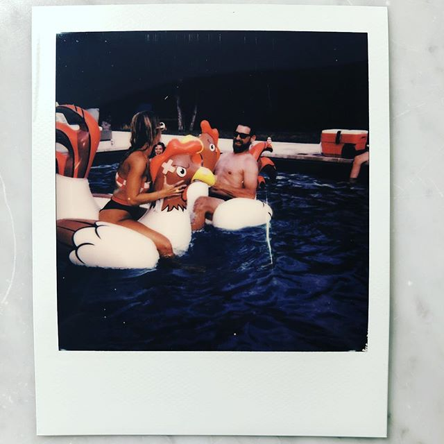 Current mood aaaaand.. Missin the chicken 🐔 fighting days of summer - eeeets 🥶 - #chickenfight#poolparty#bandparty#polaroidoriginals